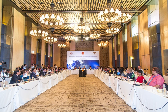 Steering Group Meeting and Ad Hoc Group Senior Officials' Meeting on 22-23 July 2019 in Da Nang, Viet Nam