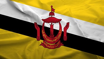 The Bali Process Membership Brunei Darussalam